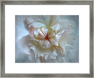 Framed Print featuring the photograph Friendship Is The Breathing Rose by Louise Kumpf