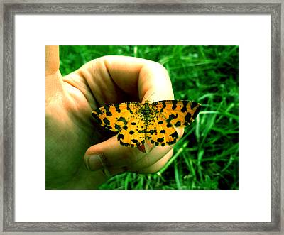 Friendship Framed Print by Lucy D