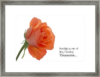 Framed Print featuring the photograph Friendship Treasures by Kim Andelkovic