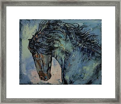 Friesian Stallion Framed Print by Michael Creese