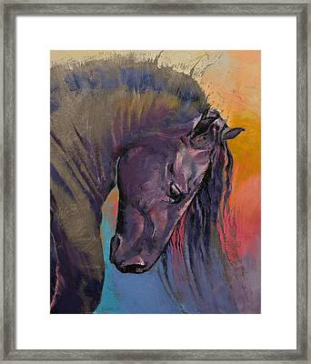 Friesian Horse Framed Print
