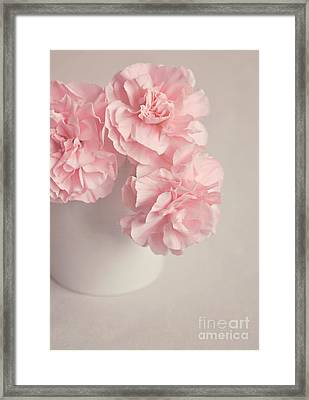 Frilly Pink Carnations Framed Print by Lyn Randle