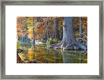 Frio River Morning Framed Print by Silvio Ligutti