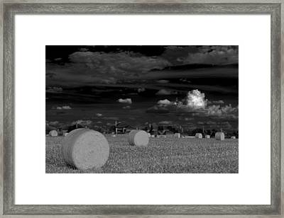 Frisco Dream Framed Print by Darryl Dalton