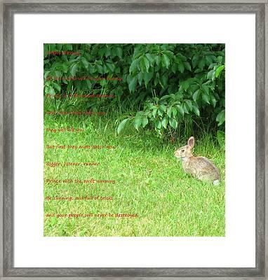 Frith's Blessing Framed Print