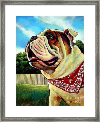 Fritz Framed Print by Robert Phelps