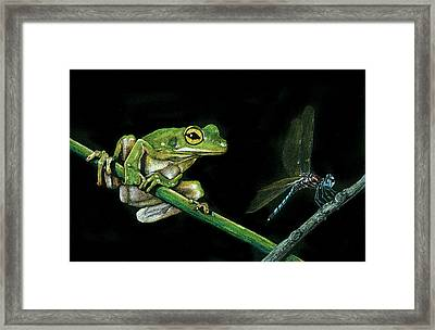 Frog And Dragonfly Framed Print