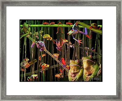 Frog Bog Framed Print