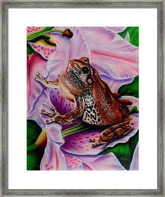 Frog Flower Framed Print