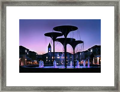 Frog Fountain Pano Framed Print