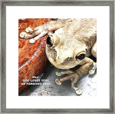 Frog Talk Framed Print by Belinda Lee