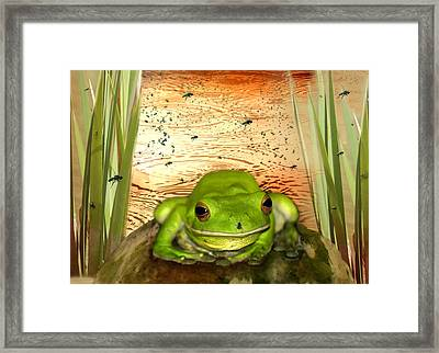 Froggy Heaven Framed Print