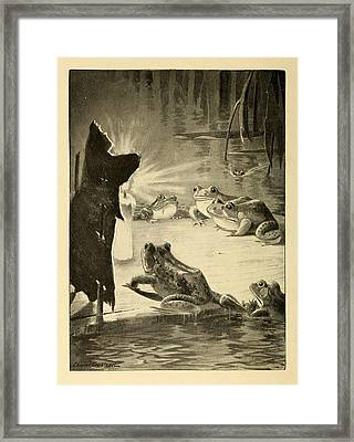 Frogs And Candle Framed Print by Philip Ralley