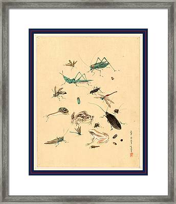 Frogs Snails And Insects, Including Grasshoppers Beetles Framed Print