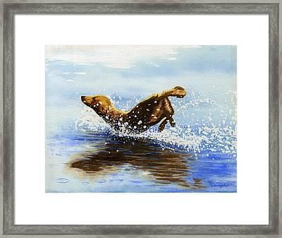Frolicking Dog Framed Print