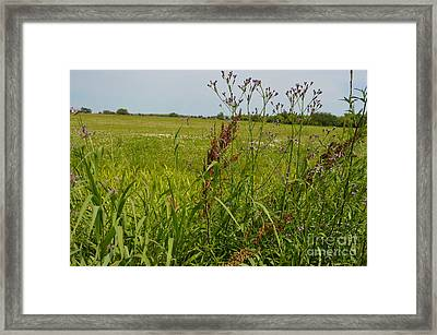 From A Soldier's Perspective Framed Print by Alys Caviness-Gober