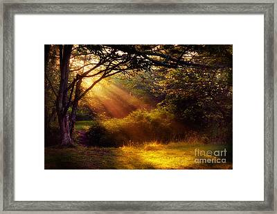 From Above - Blue Ridge Mountains Framed Print by Dan Carmichael