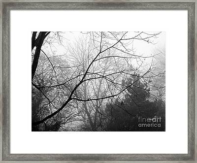 Framed Print featuring the photograph From Hence We Come by Robyn King