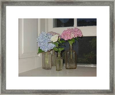 Framed Print featuring the photograph From My Window Sill  by Delona Seserman
