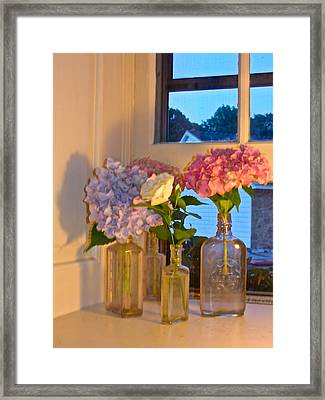 Framed Print featuring the photograph From My Window Sill In Colors by Delona Seserman