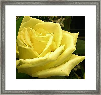 From One Friend To Another Framed Print by Bruce Bley