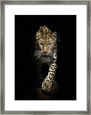 From Out Of The Darkness Framed Print by Paul Neville