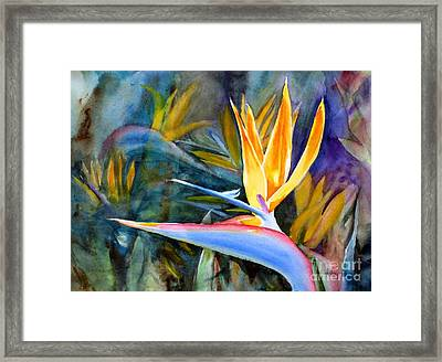 From Paradise Framed Print by Mohamed Hirji