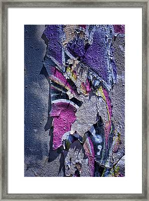 From Rags To Riches Framed Print by Nikolyn McDonald