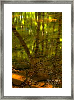 From River Rocks To Forest Reflections Framed Print by Adam Jewell
