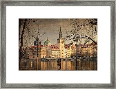 From Strelecky Island Framed Print