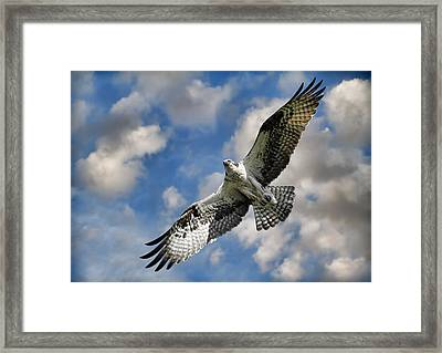 From The Clouds Framed Print by Steve McKinzie