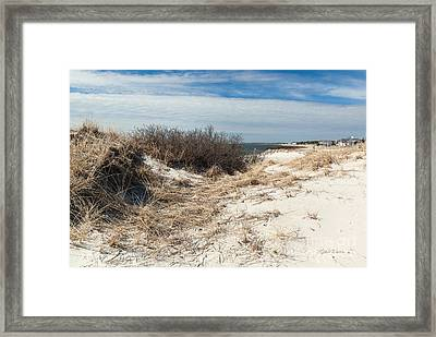 From The Dunes Framed Print