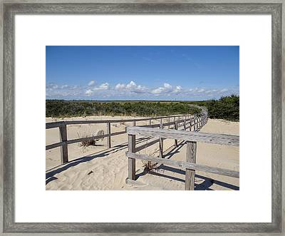 From The Dunes To The Marsh Framed Print