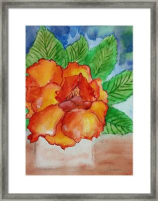 From The Garden Framed Print by Alethea McKee