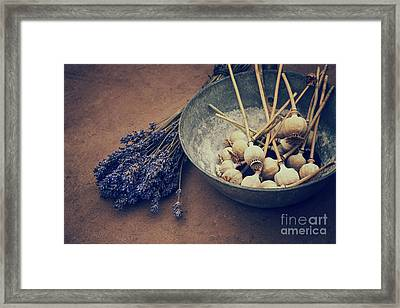 From The Garden Framed Print by Tim Gainey