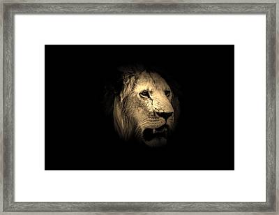 From The Shadows  Framed Print by Aidan Moran