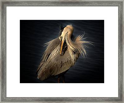Front Cover Of The Grand Strand Magazine Framed Print by Paulette Thomas