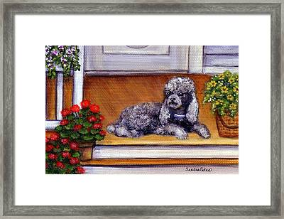 Framed Print featuring the painting Front Porch Poodle by Sandra Estes