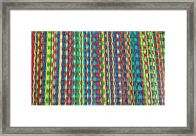 Front Porch Rug Framed Print by Larry Bodinson