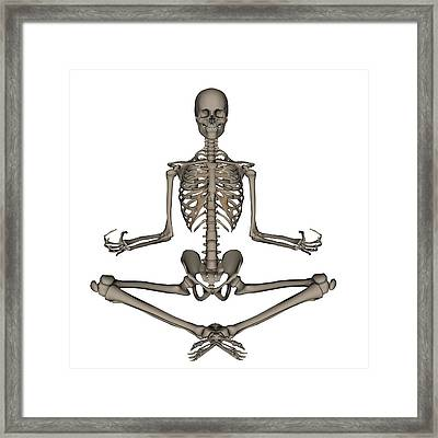 Front View Of Human Skeleton Meditating Framed Print by Elena Duvernay