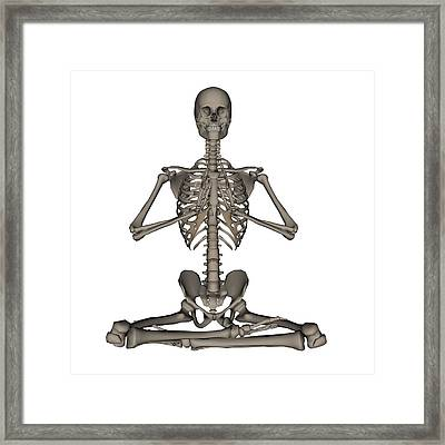 Front View Of Human Skeleton Meditation Framed Print by Elena Duvernay