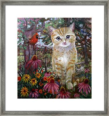 Front Yard Kitty Framed Print