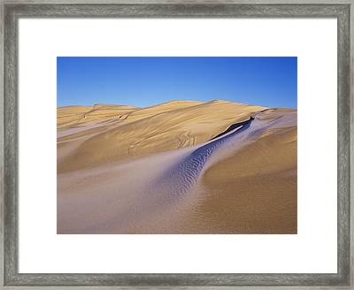 Frost Accents The Sand Dunes In Oregon Framed Print by Robert L. Potts