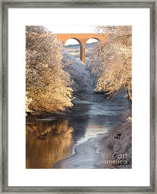 Framed Print featuring the photograph Frost And Ice by Jacqi Elmslie