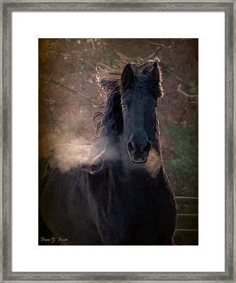 Frost Framed Print by Fran J Scott