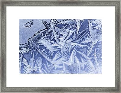 Frost In Blue Framed Print by Dana Moyer