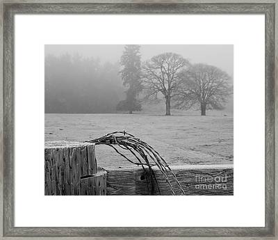Frost On The Fence Post Framed Print