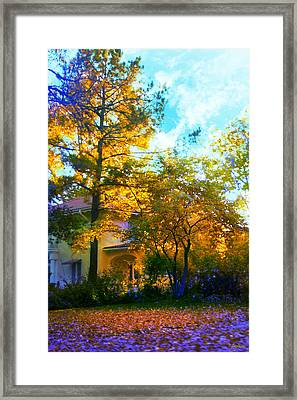 Frost On The Pumpkin Framed Print