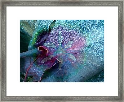 Frost On Turquoise Framed Print by Shirley Sirois