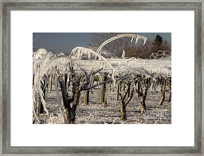 Frost Protection Framed Print by Ron Sanford